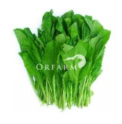 Rau cải hữu cơ baby EM Green