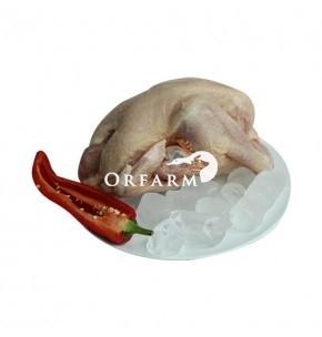 Combo số 10: 01 gà tươi hữu cơ nguyên con+01 túi thịt thăn+ 01 giò sống