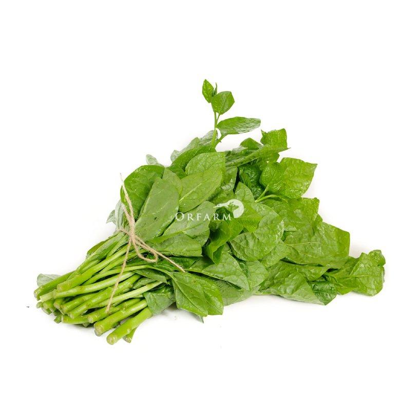 Mồng tơi hữu cơ EM Green
