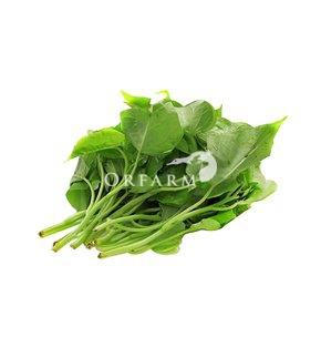 Rau lang hữu cơ EM Green