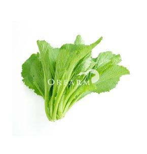 Cải xanh hữu cơ EM Green