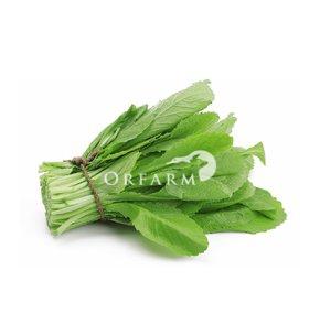Cải canh hữu cơ EM Green