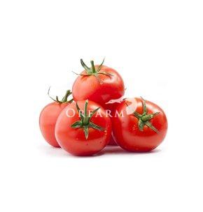Cà chua hữu cơ EM Green