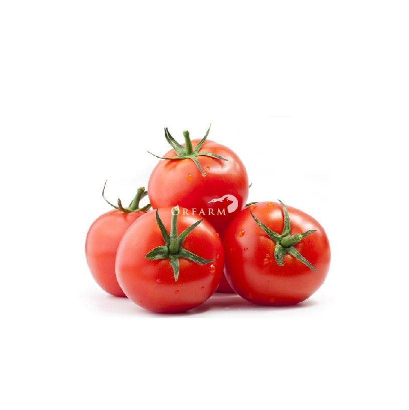 Cà chua Đà Lạt GAP