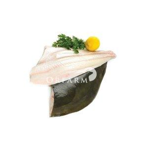 Cá bơn đen fillet