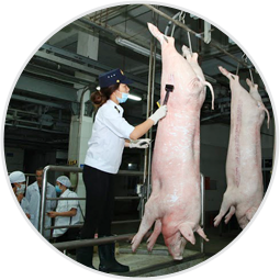Slaughter hung, processed by European standards